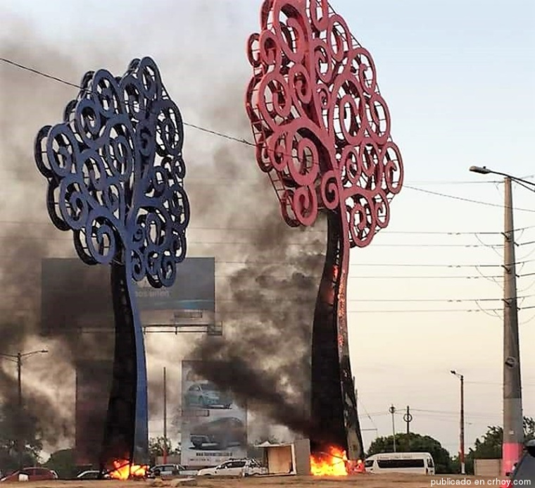 Arboles-vida-Nicaragua-destruidos.jpg